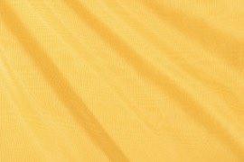02_lemon_bengaline