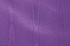 04_purple_bengaline