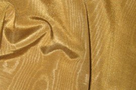 16_gold_bengaline